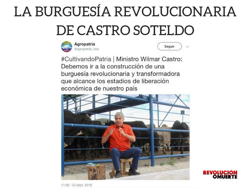 LA BURGUESÍA REVOLUCIONARIA DE CASTRO SOTELDO
