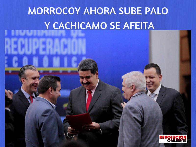 MORROCOY AHORA SUBE PALO Y CACHICAMOSE AFEITA